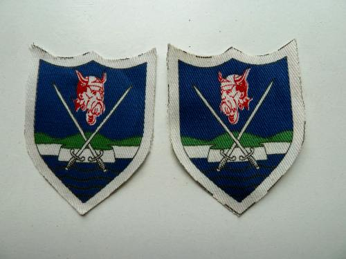 Mint Original Unworn Cloth Badge Pair Eastern Command