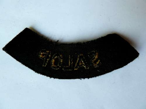 WW2 ARP & Civil Defence Breast Title For SALOP