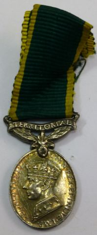 Lovely GRVI Territorial Efficiency Miniature Medal