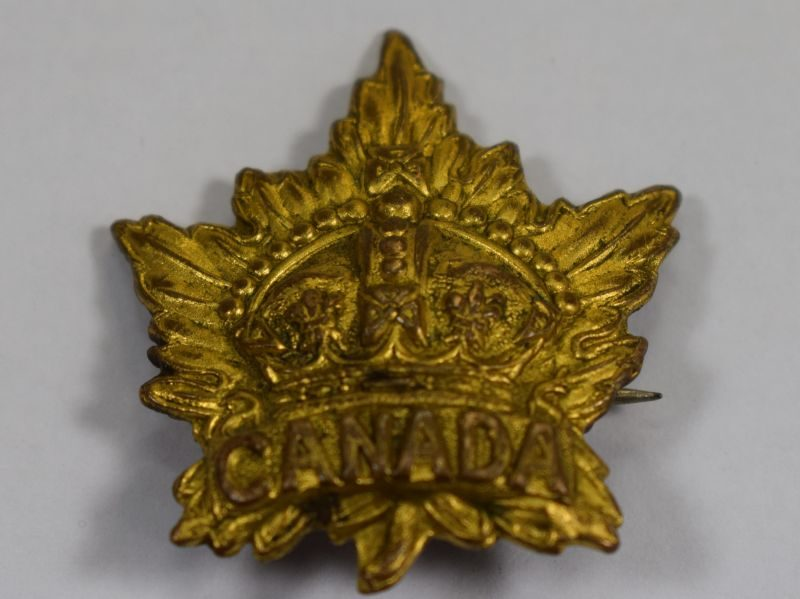 WW1 Canadian Collar Dog Converted to Sweetheart Brooch 1914