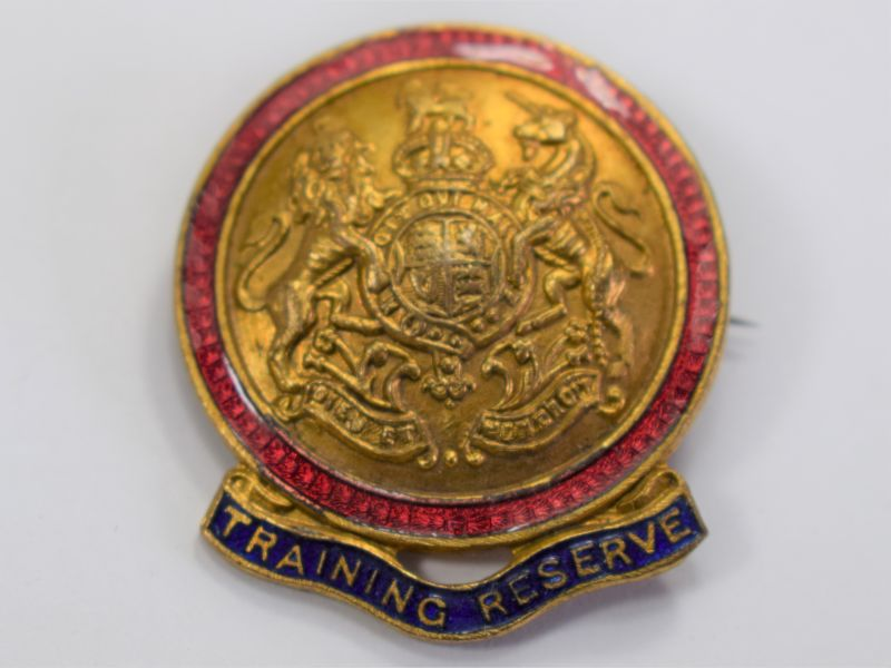 Lovely WW1 Part Enamelled Training Reserve Pin Cap Badge ?