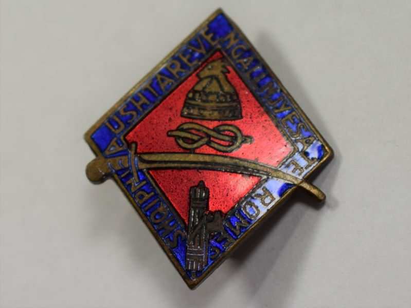 A24) Original WW2 Italian Albania Campaign Pin Badge