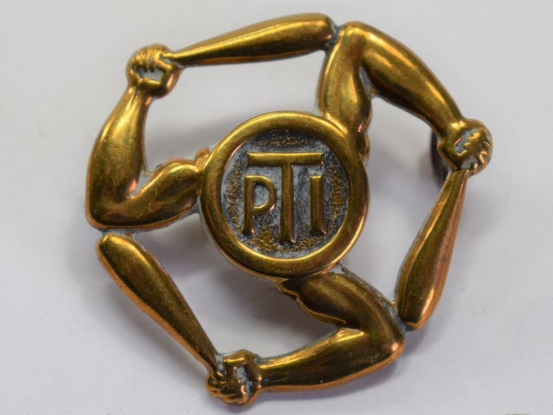 78) Original WW2 RAF Physical Training Instructor Sleeve Badge